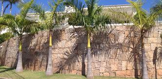 muro de pedra - Cabreúva Pedras | Muro de Pedra, Gabião, Paralelepípedo e Bloquete